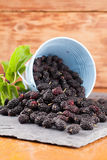 Mulberries split on a slate board Stock Photography