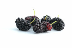 Mulberry. Fruits Royalty Free Stock Images