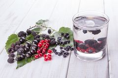 Mulberry berries, blackberries and currants detox water on white wooden table stock image