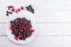 Mulberry berries, blackberries and currants on a white plate on background wooden table. The flat composition stock image