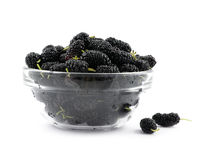 A mulberry black is in a dish Stock Photo