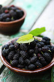 Mulberry in a bowl Stock Photos