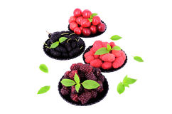 Mulberry, cherry, raspberry, blackberry in a plates_6 Stock Image