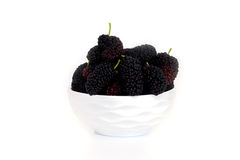 Mulberry in a dish with Isolated on white background blackberry. Mulberry n a dish with Isolated on white background. blackberry Stock Photography