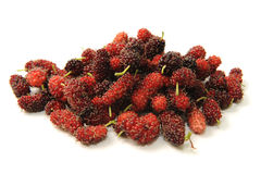 Mulberry fruit. Close up of mulberry fruit stock images
