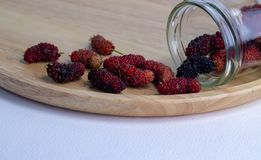 Mulberry fruit on a white background stock photography