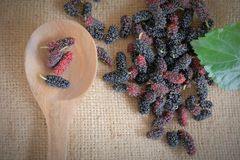 Mulberry fruits on wooden scoop Stock Photography