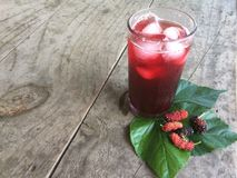 Mulberry juice for health. royalty free stock photos