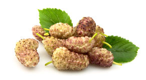 Mulberry with leafs Royalty Free Stock Image