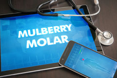 Mulberry molar (cutaneous disease) diagnosis medical concept on. Tablet screen with stethoscope Royalty Free Stock Image