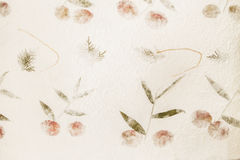 Mulberry paper Royalty Free Stock Photos
