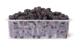 Mulberry in a plastic tray Stock Image
