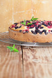 Mulberry and red currant cake. Shallow dof Royalty Free Stock Photo