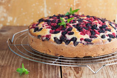 Mulberry and red currant cake. Shallow dof Royalty Free Stock Images
