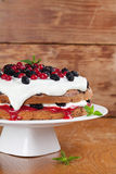 Mulberry and red currant cake with whipped cream. Mulberry and red currant cake with yogurt and whipped cream Stock Photography