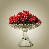Mulberry and Red Currants Stock Images