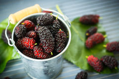 Mulberry. Ripe black mulberry in the bucket on the table Royalty Free Stock Images