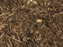 mulch предпосылки Стоковая Фотография