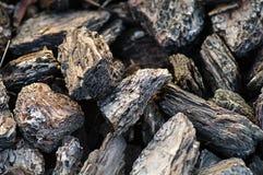 mulch расшивы Стоковое Фото