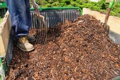 mulch сада стоковая фотография rf
