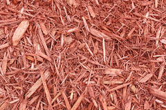 Mulch сада Стоковые Изображения
