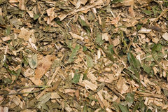 Mulch. Full frame of shredded tree and leaf mulch Stock Photography