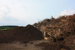 Before and After Mulch. The right side is where people dump trees and branches. They are piled up and then left to compost. The small pile to the left is what Royalty Free Stock Images