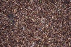 Mulch расшивы Стоковая Фотография RF