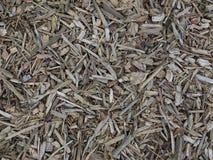 mulch Imagem de Stock