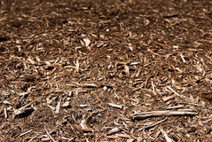 Mulch Background. A perspective view of the top of a mulch bed from down low Stock Photo
