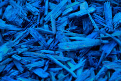Mulch Blue Coloured Decorative Bark. Garden decoration on the soil texture photography Stock Image