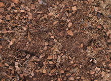 Mulch Brown  Background Stock Image