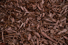 Mulch Brown Decorative Bark. Mulch Brown Coloured Decorative Bark garden decoration on the soil texture photography Stock Images