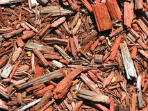 Mulch chips Stock Images