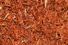 Mulch da jarda Imagem de Stock