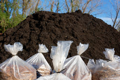 Mulch Pile With Bags of Mulch Stock Photo
