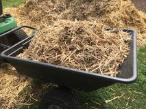 Mulch in trailer Stock Photography