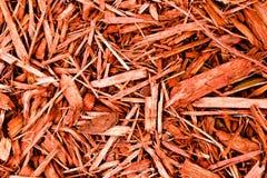 Mulch vermelho de Cypress Foto de Stock
