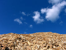Mulch Wood Pieces And Blue Sky stock images
