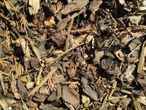 Mulch woodchips texture Royalty Free Stock Photos