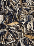 Mulched ground Stock Photography