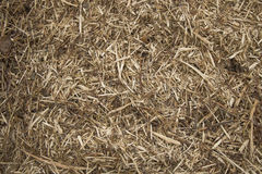 Mulched wood stock photography