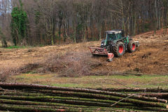 Mulcher砍伐森林 免版税库存图片