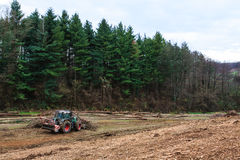 Mulcher deforestation Stock Photography