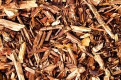 Mulching bark wooden texture. Brown mulching bark wooden texture Stock Photography