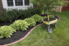 Mulching em torno dos arbustos Fotografia de Stock Royalty Free