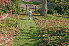 Mulching Lawn Mowing Stock Photos