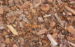 Mulchy mulch Royalty Free Stock Photography