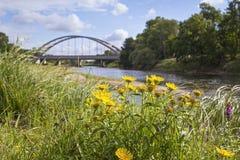 Mulde flod i sommar i Sachsen-Anhalt Royaltyfri Foto