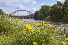 Mulde river in summer in Saxony-Anhalt. / Germany, the bridge in background is located near the town Dessau Royalty Free Stock Photo